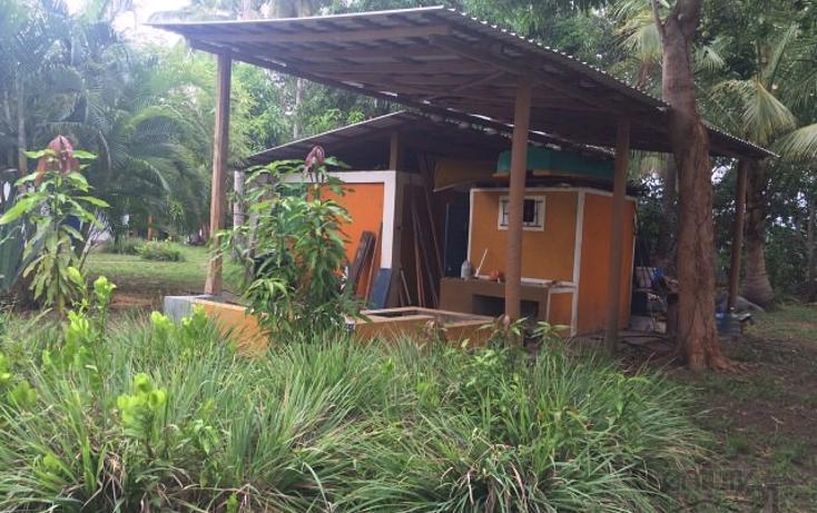 Foto de terreno habitacional en venta en rancho las palmas s/n , pesquería boca del cielo, tonalá, chiapas, 1704888 No. 10
