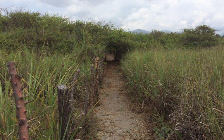 Foto de terreno habitacional en venta en rancho las palmas sn, pesquería boca del cielo, tonalá, chiapas, 1704888 no 13