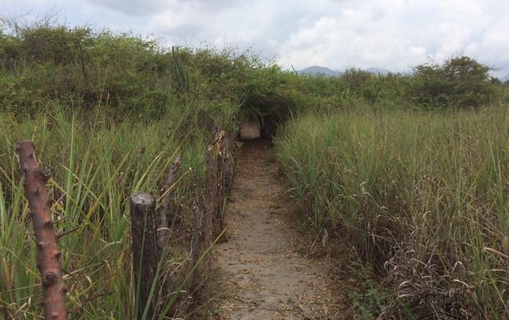 Foto de terreno habitacional en venta en rancho las palmas s/n , pesquería boca del cielo, tonalá, chiapas, 1704888 No. 13