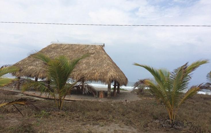 Foto de terreno habitacional en venta en rancho las palmas s/n , pesquería boca del cielo, tonalá, chiapas, 1704888 No. 14