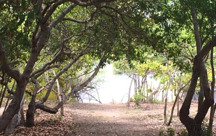 Foto de terreno habitacional en venta en rancho las palmas s/n , pesquería boca del cielo, tonalá, chiapas, 1704888 No. 15
