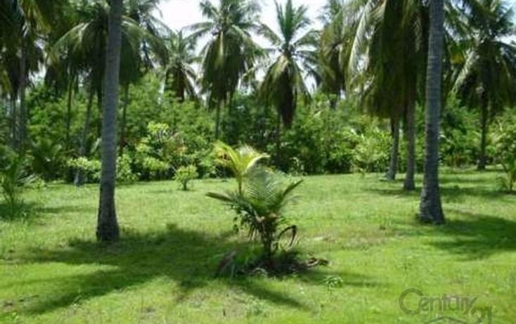 Foto de terreno habitacional en venta en rancho las palmas s/n , pesquería boca del cielo, tonalá, chiapas, 1704888 No. 20