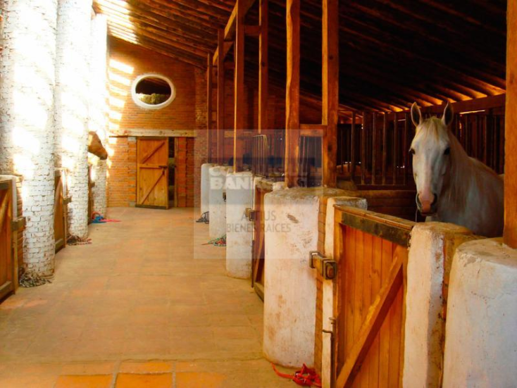 Foto de rancho en venta en  , jilotepec de molina enríquez, jilotepec, méxico, 1329901 No. 12