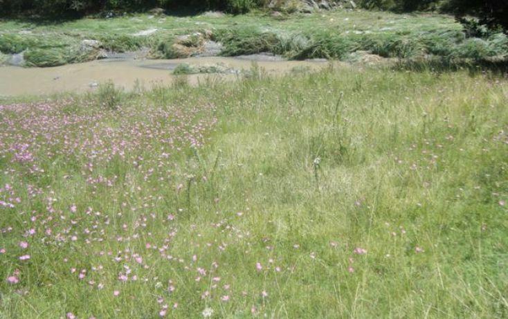 Foto de terreno habitacional en venta en rancho san diego, ixtapan de la sal, ixtapan de la sal, estado de méxico, 1679511 no 07