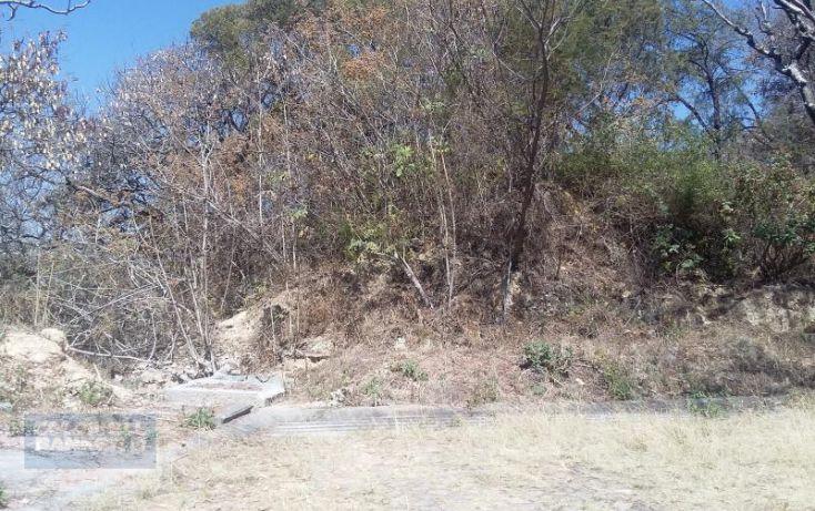 Foto de terreno habitacional en venta en rancho san diego lote 1a 10, manzana ix, ixtapan de la sal, ixtapan de la sal, estado de méxico, 1954264 no 03