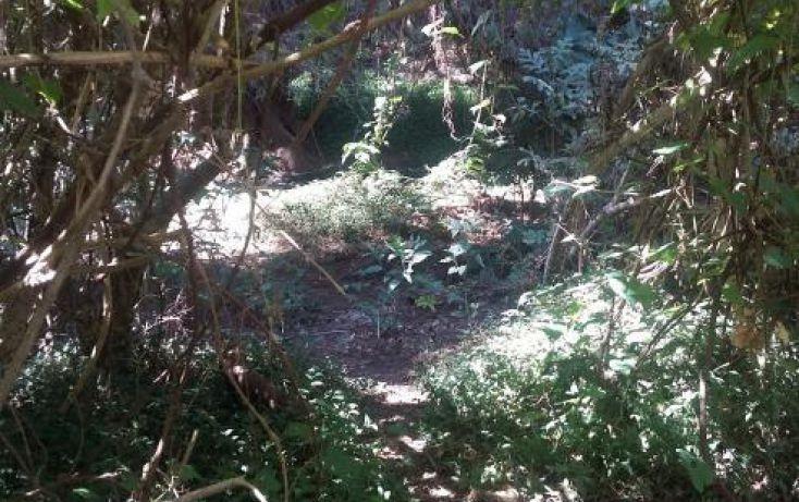 Foto de terreno habitacional en venta en rancho san diego lote 1a 10, manzana ix, ixtapan de la sal, ixtapan de la sal, estado de méxico, 1954264 no 05