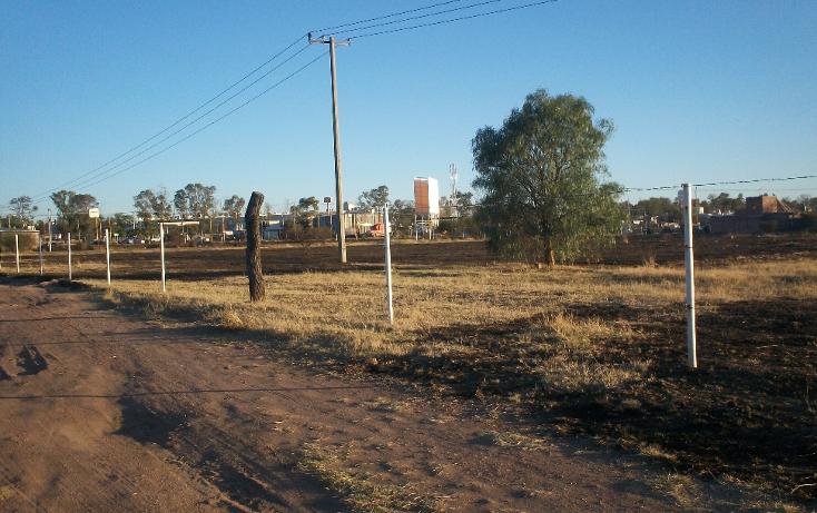 Foto de terreno habitacional en venta en  , rancho santa m?nica, aguascalientes, aguascalientes, 1737794 No. 06