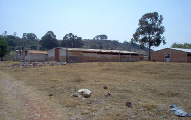 Foto de rancho en venta en rancho taxingo, jilotepec de molina enríquez, jilotepec, estado de méxico, 1799786 no 19