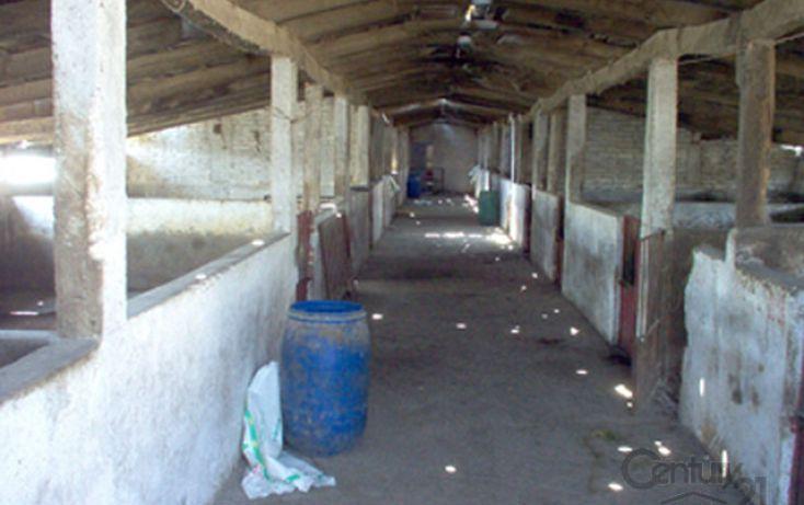 Foto de rancho en venta en rancho taxingo, jilotepec de molina enríquez, jilotepec, estado de méxico, 1799786 no 21