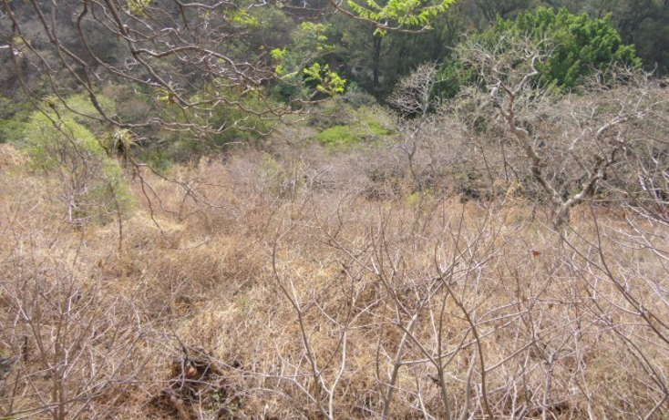 Foto de terreno habitacional en venta en  , rancho tetela, cuernavaca, morelos, 1122593 No. 02