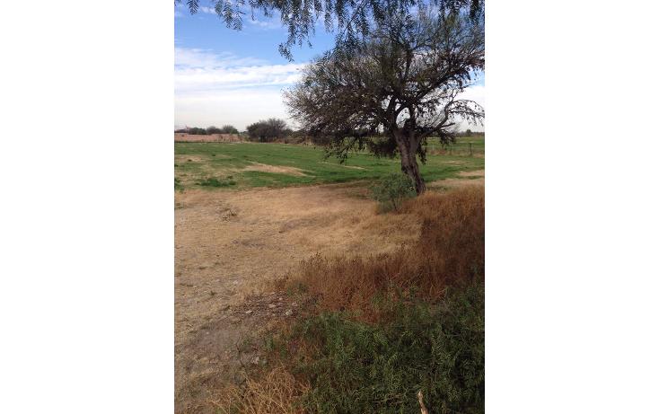 Foto de terreno habitacional en venta en  , rancho viejo 1a secc, san luis potosí, san luis potosí, 1600490 No. 03