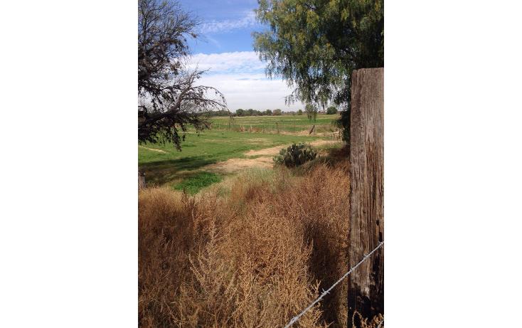 Foto de terreno habitacional en venta en  , rancho viejo 1a secc, san luis potosí, san luis potosí, 1600490 No. 04