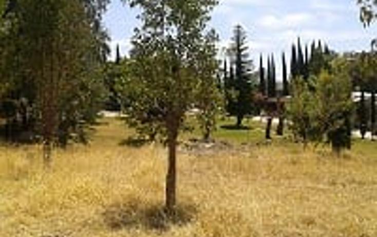 Foto de casa en venta en  , rancho viejo, concepción de buenos aires, jalisco, 1459439 No. 09
