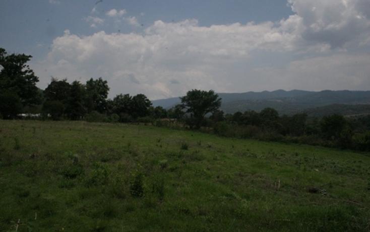 Foto de casa en venta en  , real de arriba, temascaltepec, m?xico, 829555 No. 04