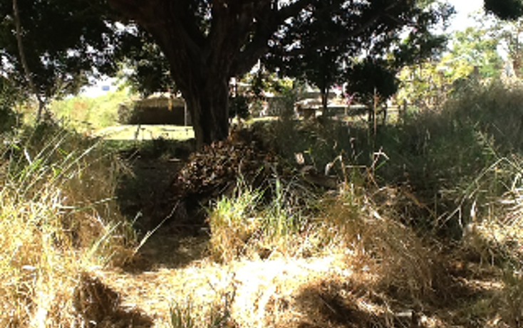 Foto de terreno habitacional en venta en  , real de oaxtepec, yautepec, morelos, 1267789 No. 07