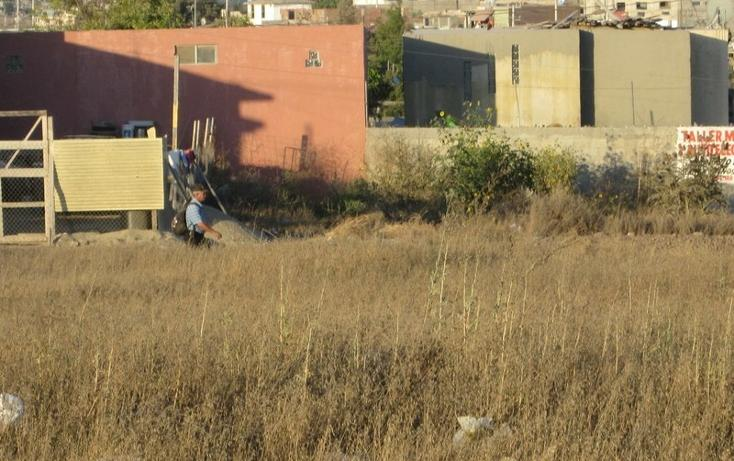 Foto de terreno comercial en renta en  , real de san francisco, tijuana, baja california, 1202623 No. 04