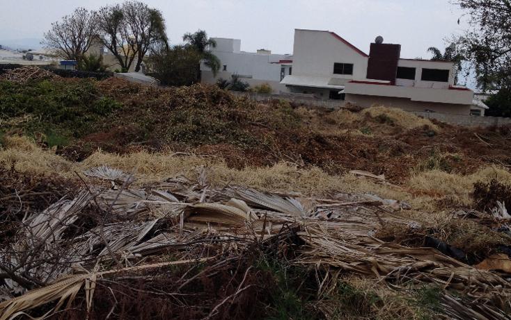 Foto de terreno habitacional en venta en  , real de tetela, cuernavaca, morelos, 1256577 No. 06