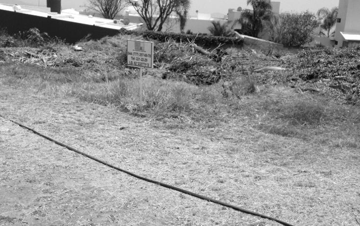 Foto de terreno habitacional en venta en  , real de tetela, cuernavaca, morelos, 1256577 No. 12