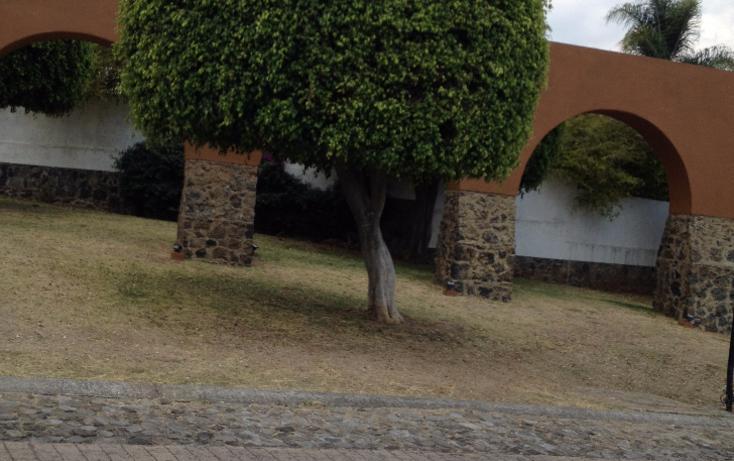 Foto de terreno habitacional en venta en  , real de tetela, cuernavaca, morelos, 1256577 No. 16