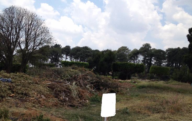 Foto de terreno habitacional en venta en  , real de tetela, cuernavaca, morelos, 1256577 No. 19