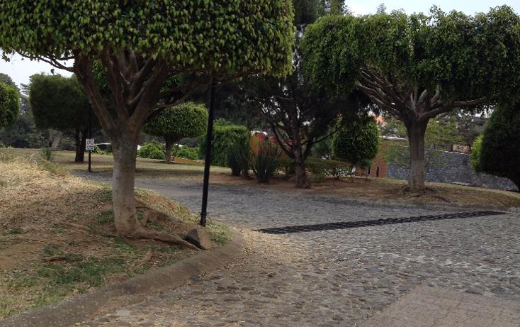 Foto de terreno habitacional en venta en  , real de tetela, cuernavaca, morelos, 1256577 No. 22