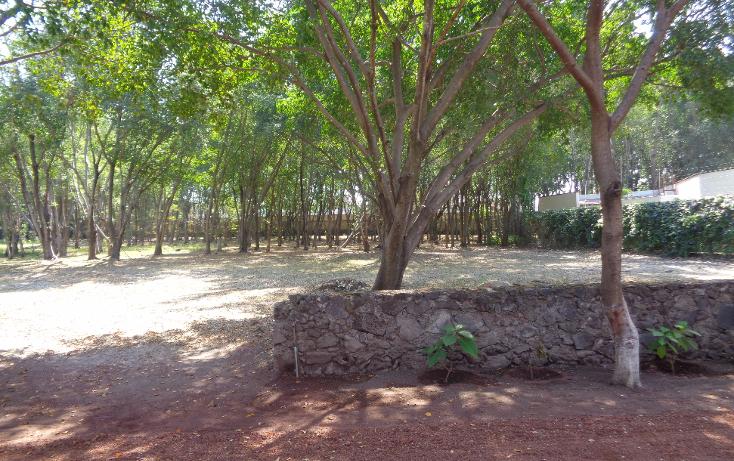Foto de terreno habitacional en venta en  , real de tezoyuca, emiliano zapata, morelos, 1742871 No. 01