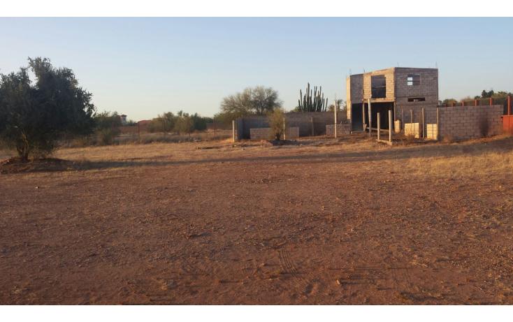 Foto de casa en venta en  , real del alamito, hermosillo, sonora, 2013906 No. 08