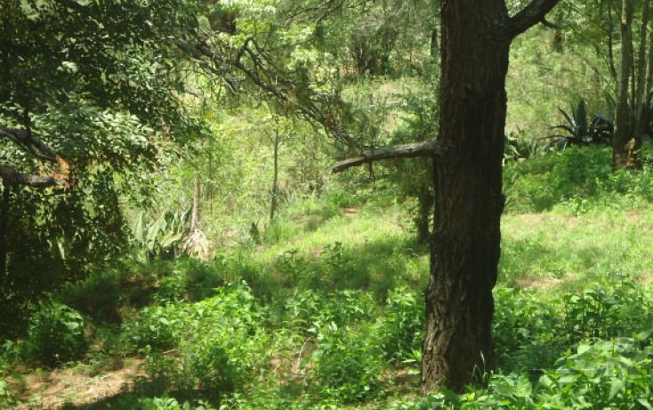Foto de terreno habitacional en venta en, real del bosque, tlajomulco de zúñiga, jalisco, 1908243 no 02