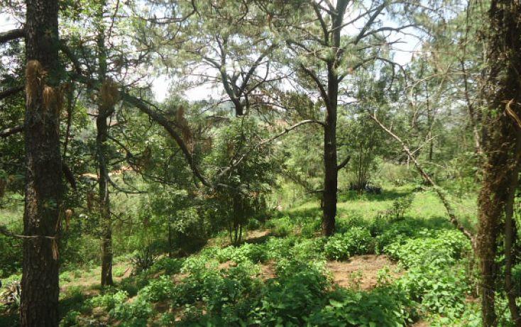 Foto de terreno habitacional en venta en, real del bosque, tlajomulco de zúñiga, jalisco, 1908243 no 04