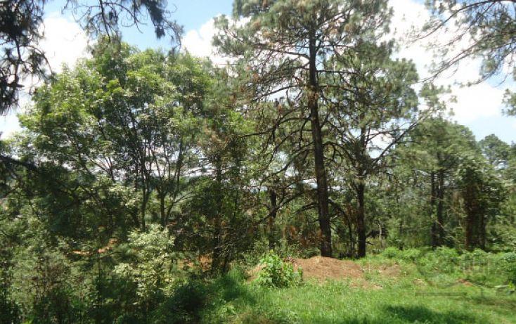 Foto de terreno habitacional en venta en, real del bosque, tlajomulco de zúñiga, jalisco, 1908243 no 05