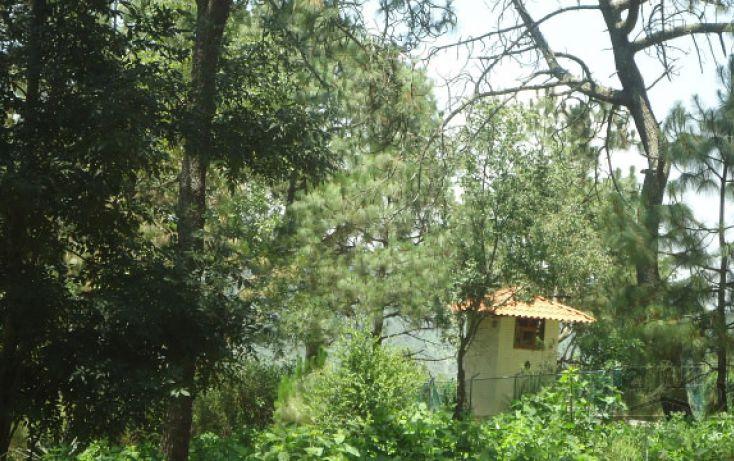 Foto de terreno habitacional en venta en, real del bosque, tlajomulco de zúñiga, jalisco, 1908243 no 07