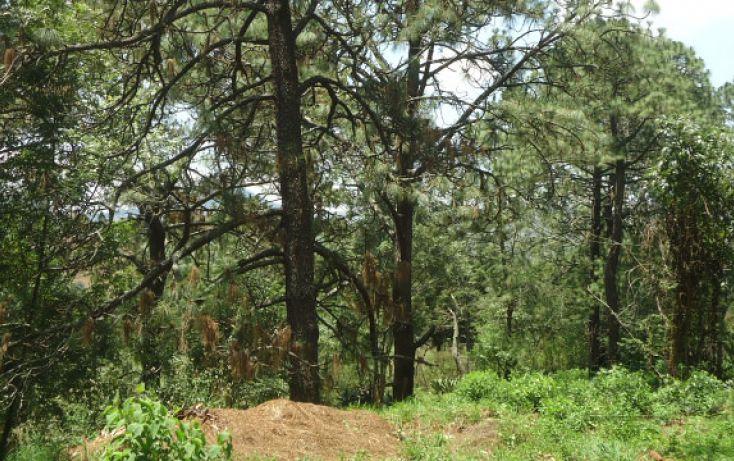 Foto de terreno habitacional en venta en, real del bosque, tlajomulco de zúñiga, jalisco, 1908243 no 08