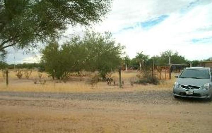 Foto de terreno habitacional en venta en  , real del catorce, hermosillo, sonora, 415871 No. 02