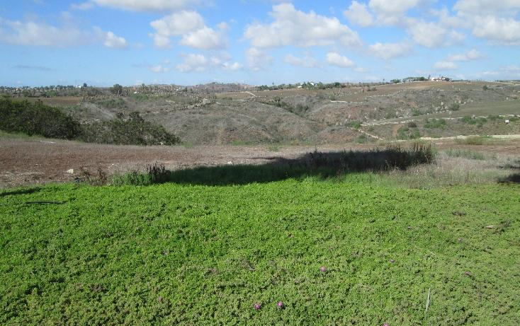 Foto de terreno habitacional en venta en  , real del mar, tijuana, baja california, 1721344 No. 03
