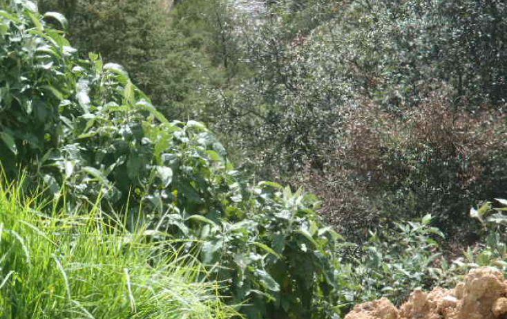 Foto de terreno habitacional en venta en real del monte, mineral del monte centro, mineral del monte, hidalgo, 1442955 no 15