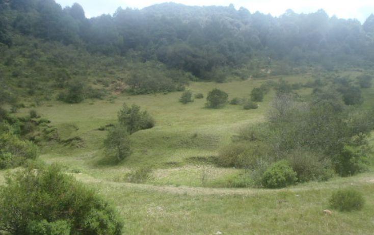 Foto de terreno habitacional en venta en real del monte, mineral del monte centro, mineral del monte, hidalgo, 1442955 no 50