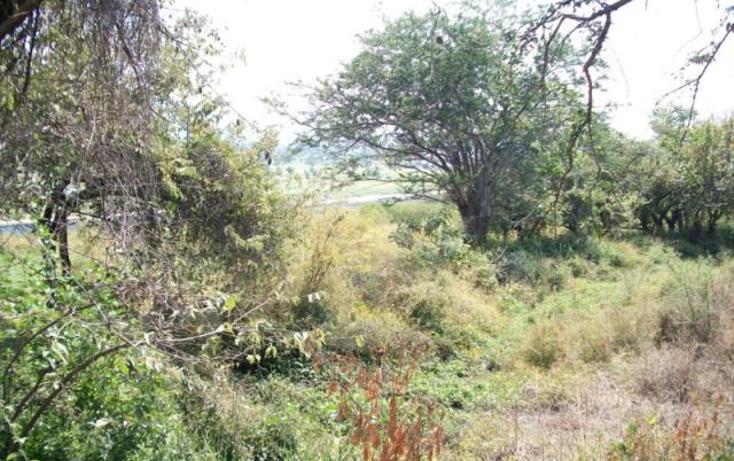 Foto de terreno habitacional en venta en  , real del puente, xochitepec, morelos, 1396497 No. 01