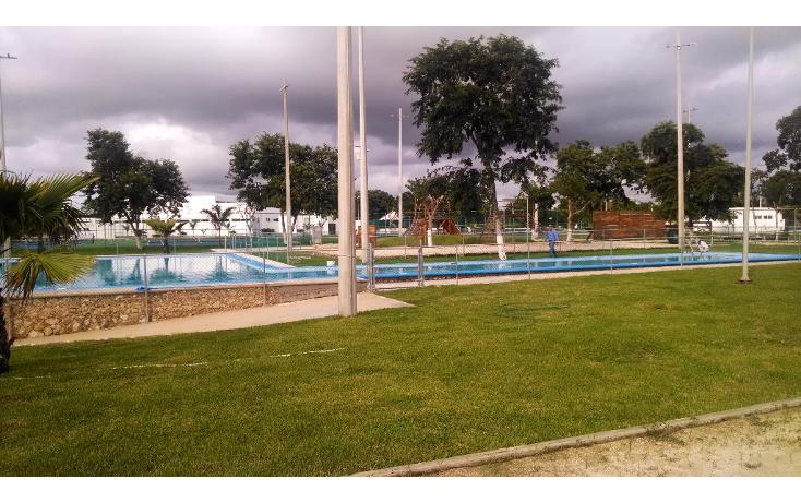 Foto de casa en venta en  , real montejo, mérida, yucatán, 1045709 No. 33