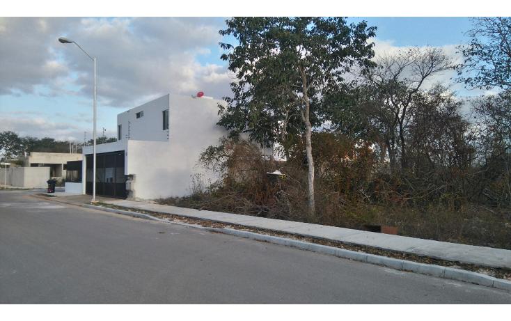 Foto de terreno habitacional en venta en  , real montejo, m?rida, yucat?n, 1724806 No. 02