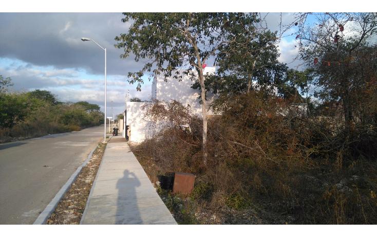 Foto de terreno habitacional en venta en  , real montejo, m?rida, yucat?n, 1724806 No. 06