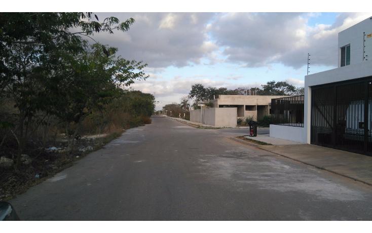 Foto de terreno habitacional en venta en  , real montejo, m?rida, yucat?n, 1724806 No. 13