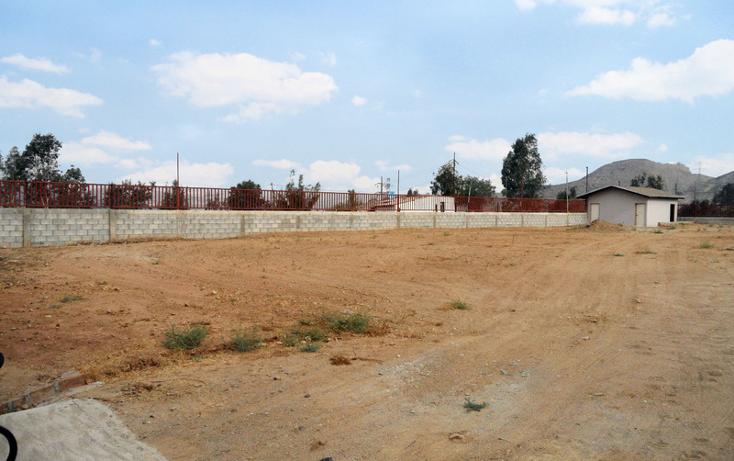 Foto de terreno comercial en renta en  , realito, tijuana, baja california, 1213591 No. 04