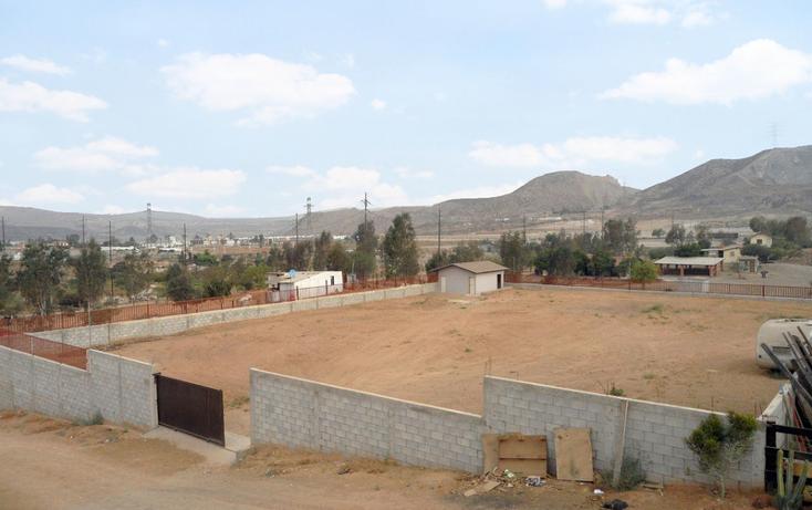 Foto de terreno comercial en renta en  , realito, tijuana, baja california, 1213591 No. 06