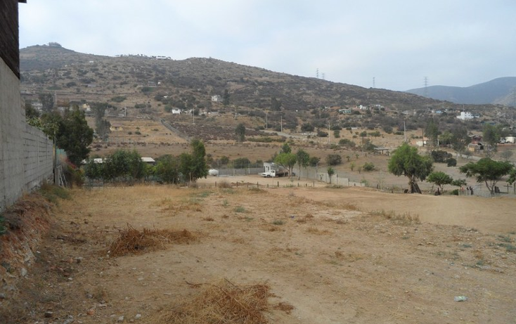 Foto de terreno comercial en renta en  , realito, tijuana, baja california, 1213591 No. 07