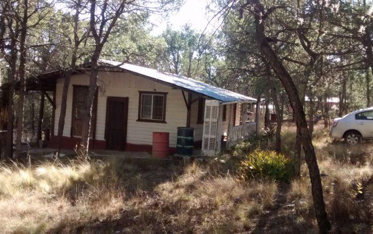 Foto de rancho en venta en refugio, los llanos, arteaga, coahuila de zaragoza, 1720160 no 02