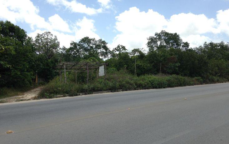 Foto de terreno comercial en venta en, región 103, benito juárez, quintana roo, 1294809 no 02