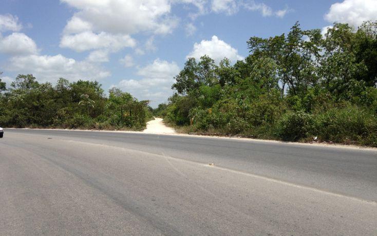 Foto de terreno comercial en venta en, región 103, benito juárez, quintana roo, 1294809 no 05