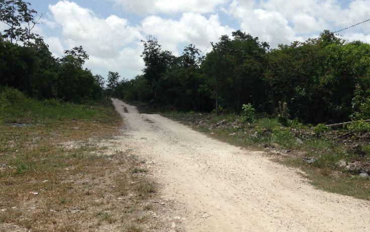 Foto de terreno comercial en venta en, región 103, benito juárez, quintana roo, 1294809 no 06