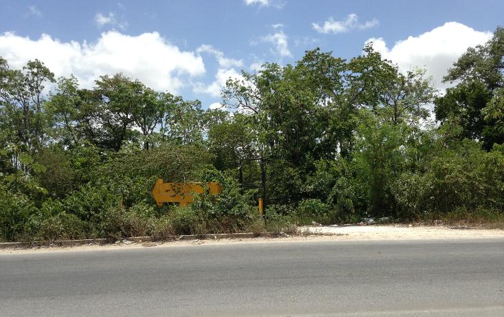 Foto de terreno comercial en venta en  , región 103, benito juárez, quintana roo, 2628784 No. 04