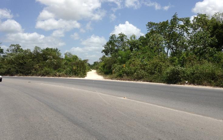 Foto de terreno comercial en venta en  , región 103, benito juárez, quintana roo, 2628784 No. 05